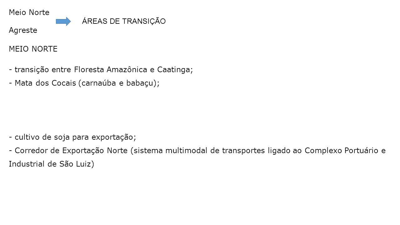 Meio Norte Agreste ÁREAS DE TRANSIÇÃO MEIO NORTE - transição entre Floresta Amazônica e Caatinga; - Mata dos Cocais (carnaúba e babaçu); - cultivo de soja para exportação; - Corredor de Exportação Norte (sistema multimodal de transportes ligado ao Complexo Portuário e Industrial de São Luiz)