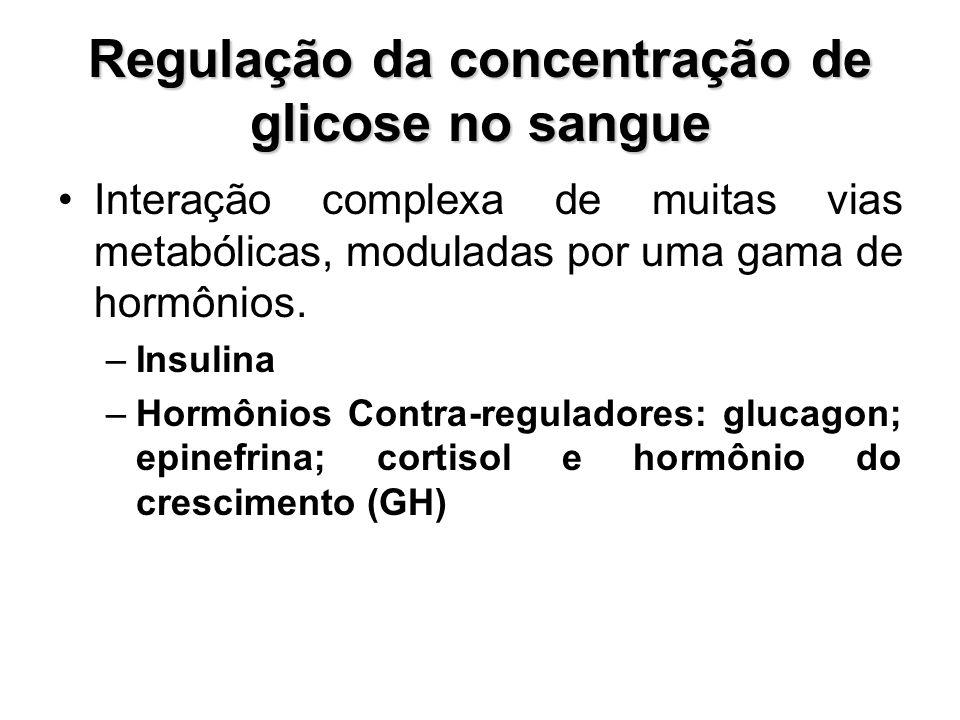 Regulação da concentração de glicose no sangue Interação complexa de muitas vias metabólicas, moduladas por uma gama de hormônios. –Insulina –Hormônio