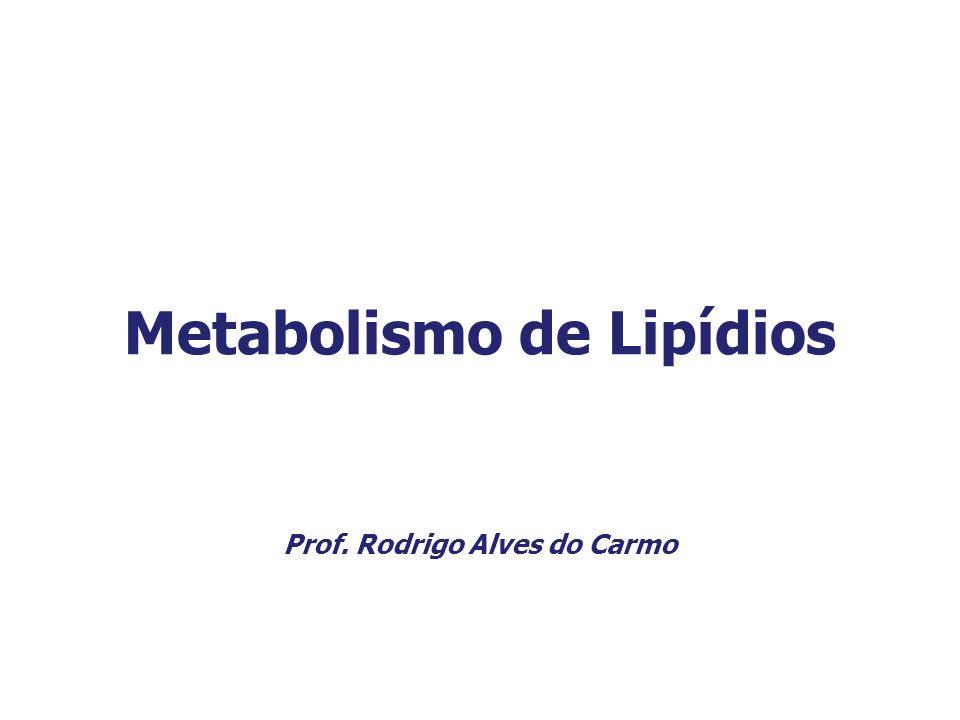 Metabolismo de Lipídios Prof. Rodrigo Alves do Carmo