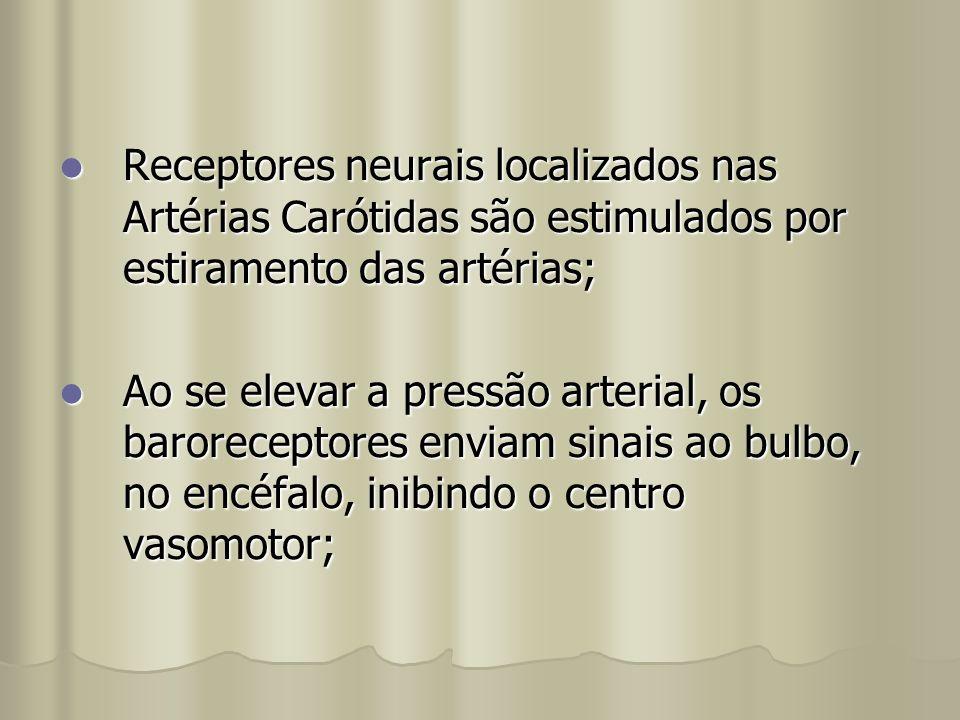 Receptores neurais localizados nas Artérias Carótidas são estimulados por estiramento das artérias; Receptores neurais localizados nas Artérias Caróti