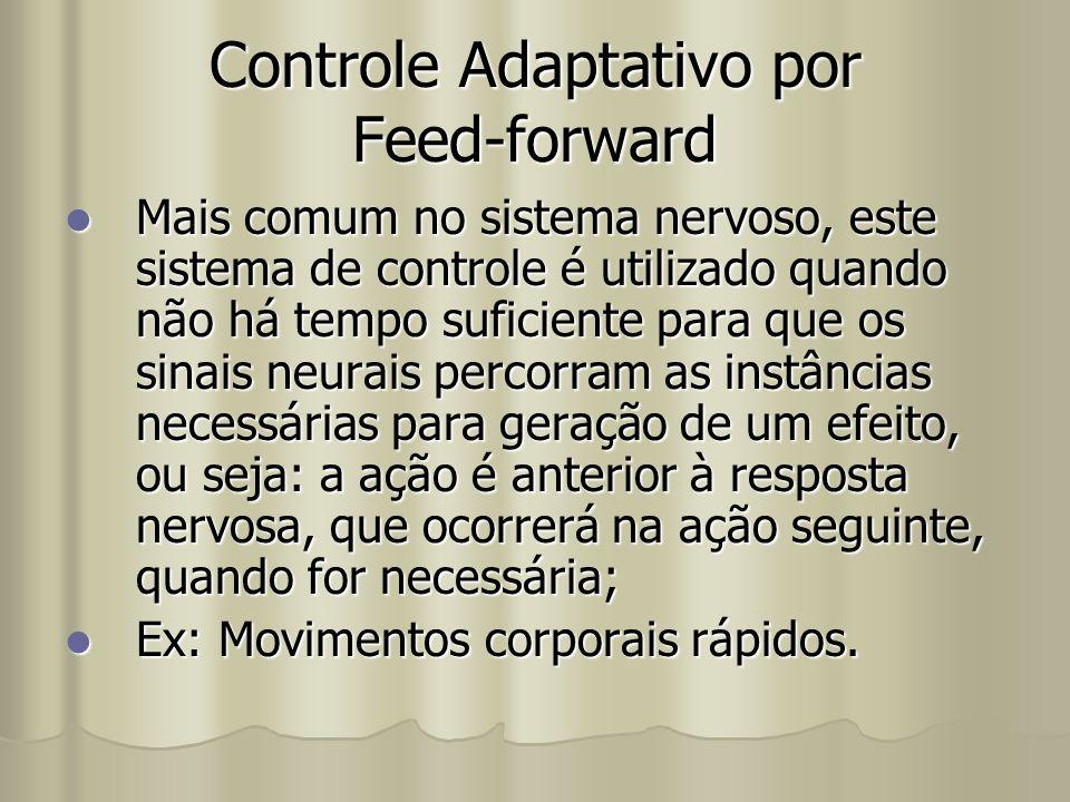 Controle Adaptativo por Feed-forward Mais comum no sistema nervoso, este sistema de controle é utilizado quando não há tempo suficiente para que os si