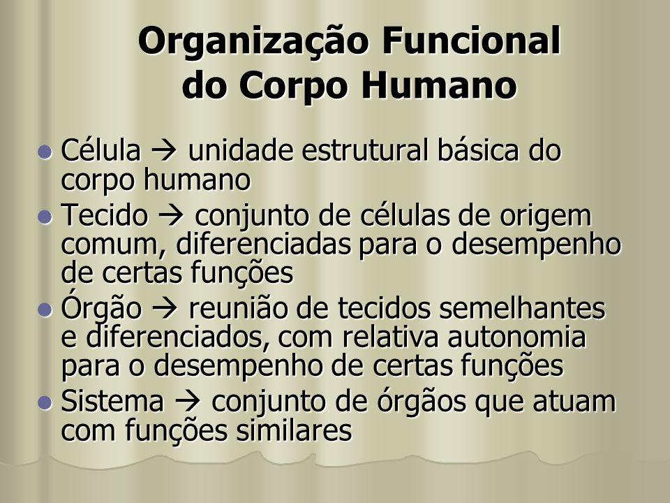 Organização Funcional do Corpo Humano Célula  unidade estrutural básica do corpo humano Célula  unidade estrutural básica do corpo humano Tecido  c