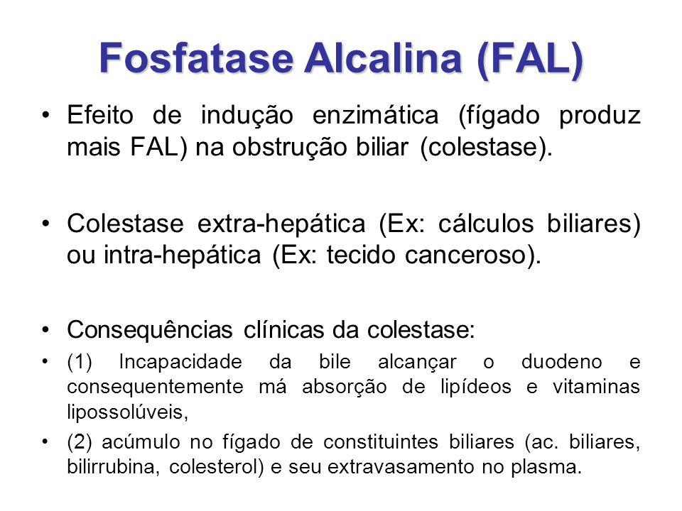 Fosfatase Alcalina (FAL) Efeito de indução enzimática (fígado produz mais FAL) na obstrução biliar (colestase). Colestase extra-hepática (Ex: cálculos