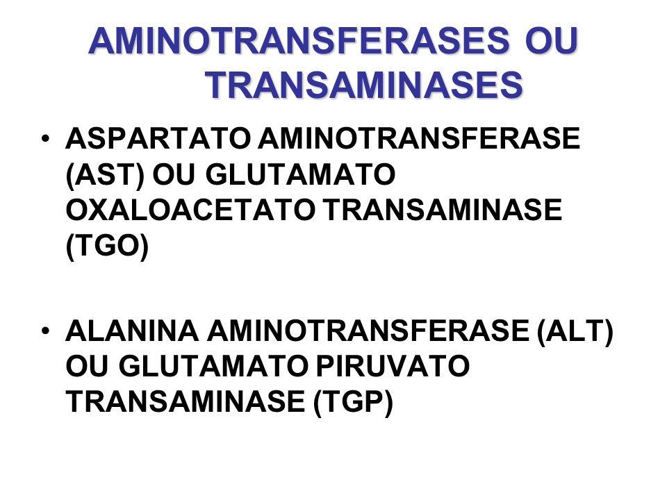 AMINOTRANSFERASES OU TRANSAMINASES ASPARTATO AMINOTRANSFERASE (AST) OU GLUTAMATO OXALOACETATO TRANSAMINASE (TGO) ALANINA AMINOTRANSFERASE (ALT) OU GLU