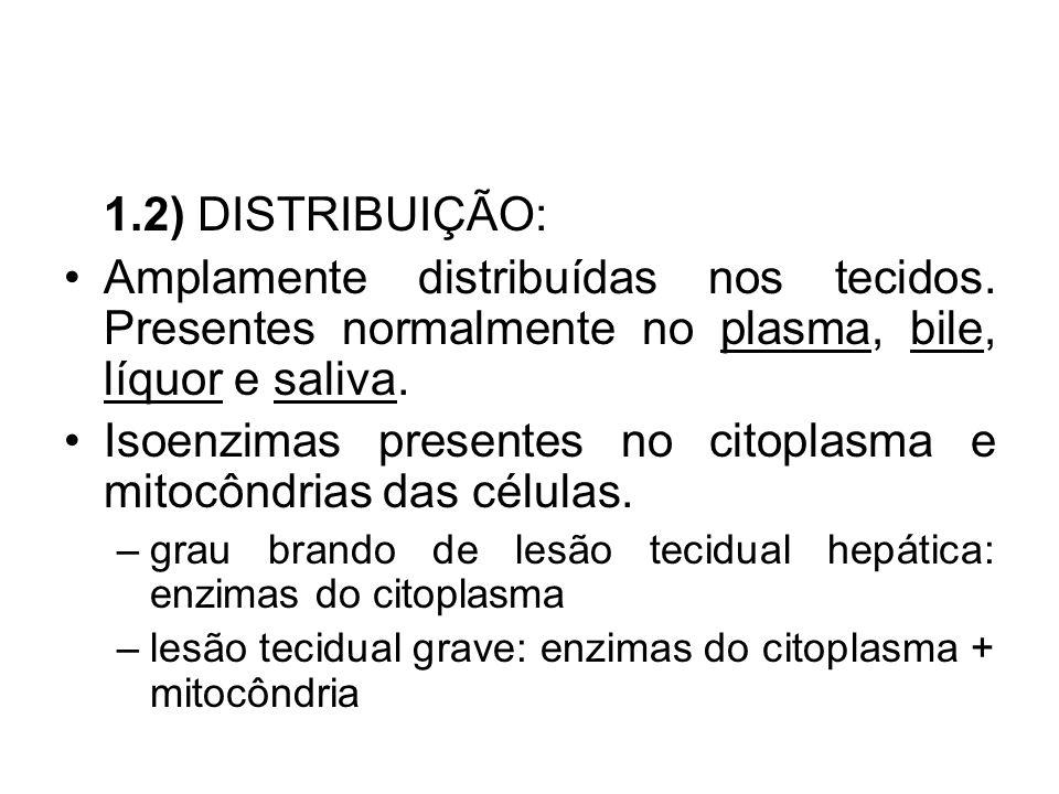 1.2) DISTRIBUIÇÃO: Amplamente distribuídas nos tecidos. Presentes normalmente no plasma, bile, líquor e saliva. Isoenzimas presentes no citoplasma e m