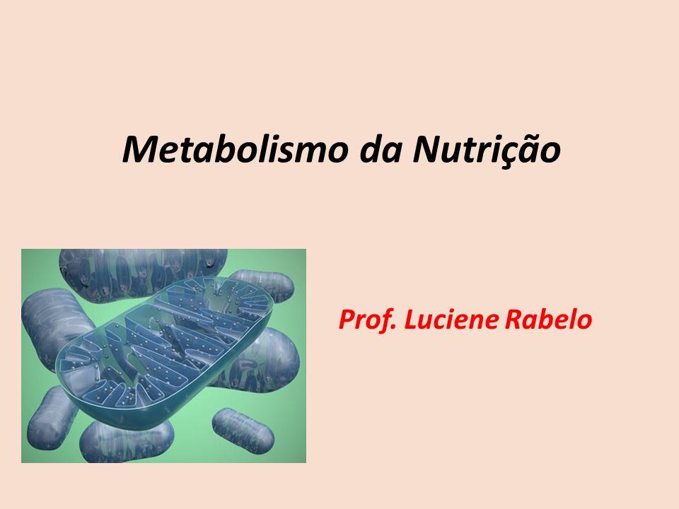 Metabolismo da Nutrição Prof. Luciene Rabelo