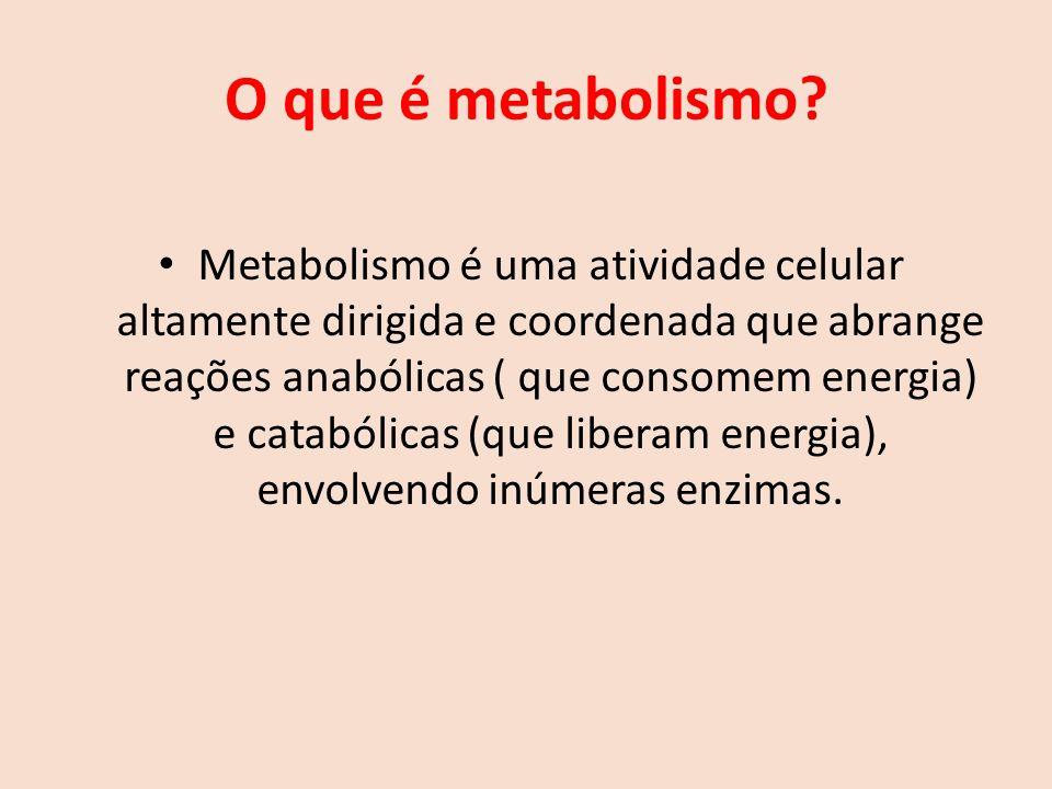 O que é metabolismo.