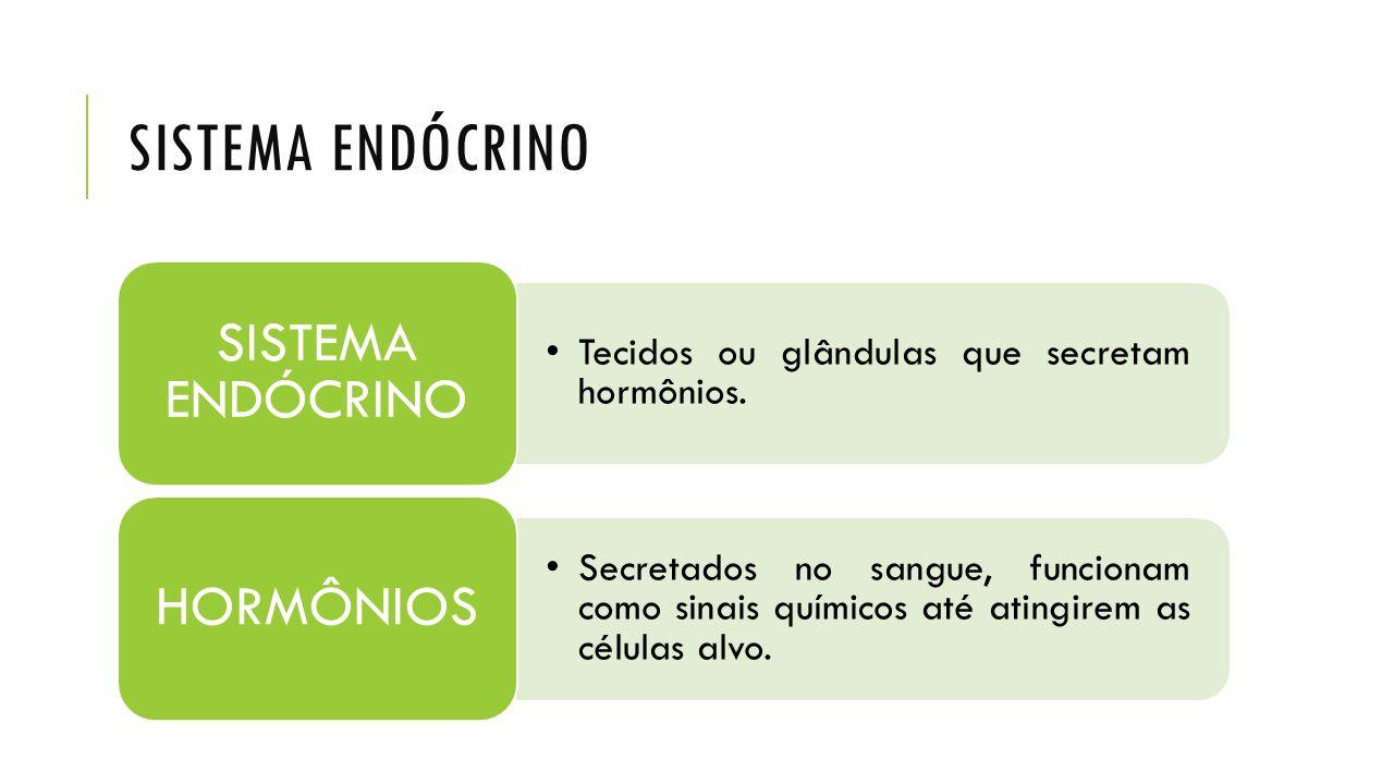 GLÂNDULAS ENDÓCRINAS E SEUS HORMÔNIOS - Medula suprarrenal: adrenalina e noradrenalina = catecolaminas.