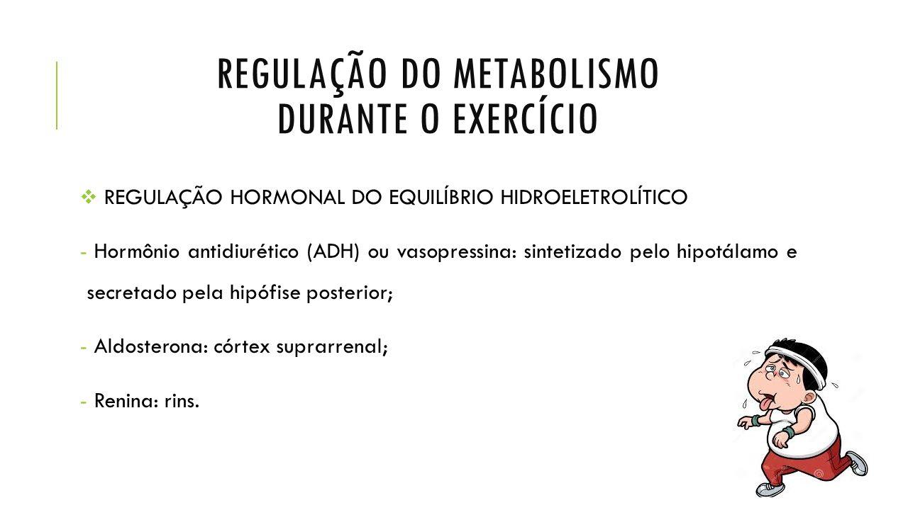 REGULAÇÃO DO METABOLISMO DURANTE O EXERCÍCIO  REGULAÇÃO HORMONAL DO EQUILÍBRIO HIDROELETROLÍTICO - Hormônio antidiurético (ADH) ou vasopressina: sintetizado pelo hipotálamo e secretado pela hipófise posterior; - Aldosterona: córtex suprarrenal; - Renina: rins.