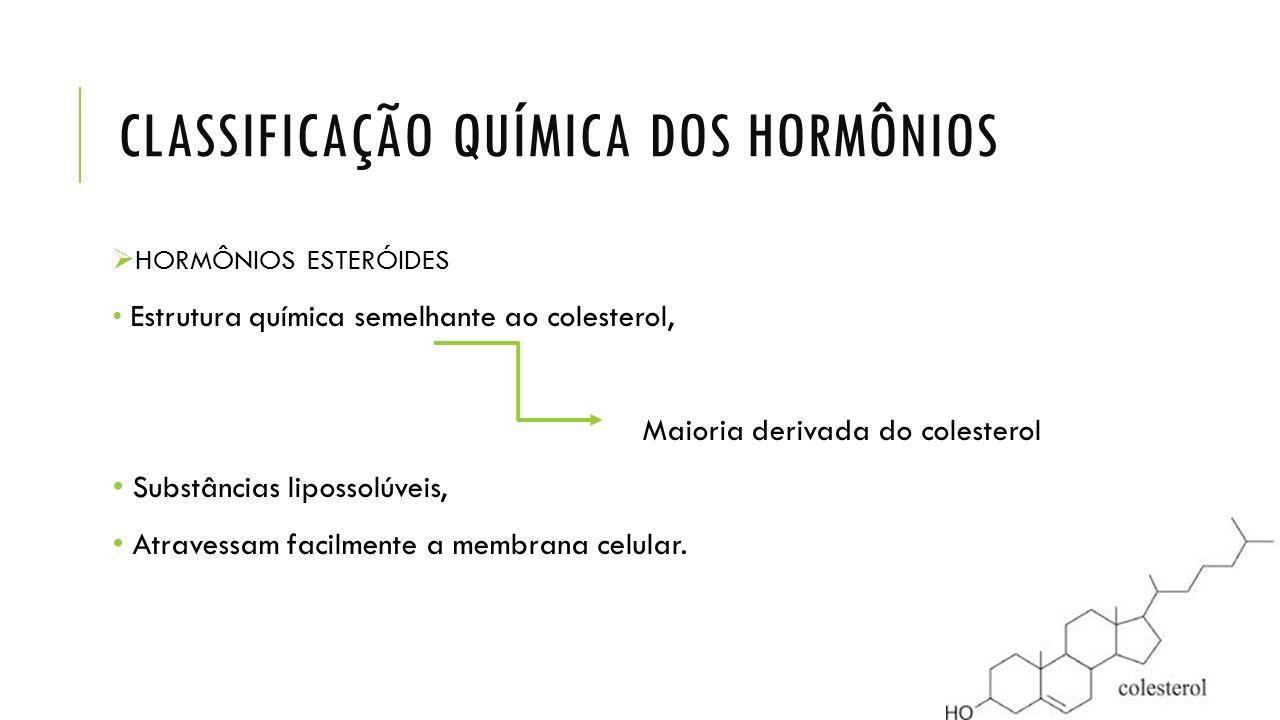 CLASSIFICAÇÃO QUÍMICA DOS HORMÔNIOS  HORMÔNIOS ESTERÓIDES Estrutura química semelhante ao colesterol, Maioria derivada do colesterol Substâncias lipo