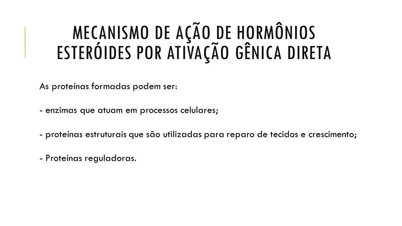 GLÂNDULAS ENDÓCRINAS E SEUS HORMÔNIOS  PÂNCREAS