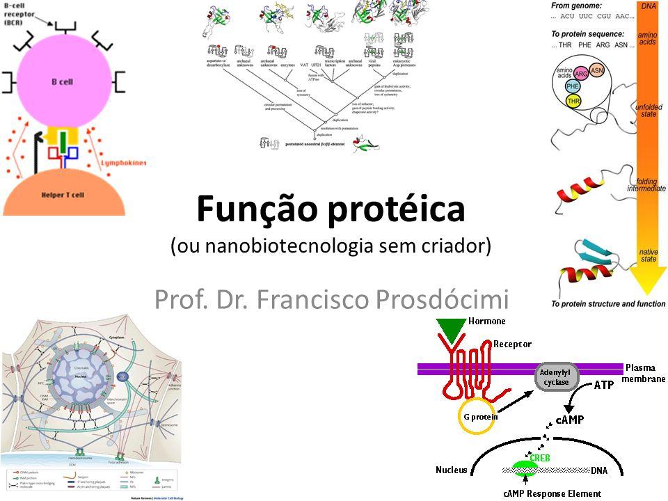 Função protéica (ou nanobiotecnologia sem criador) Prof. Dr. Francisco Prosdócimi
