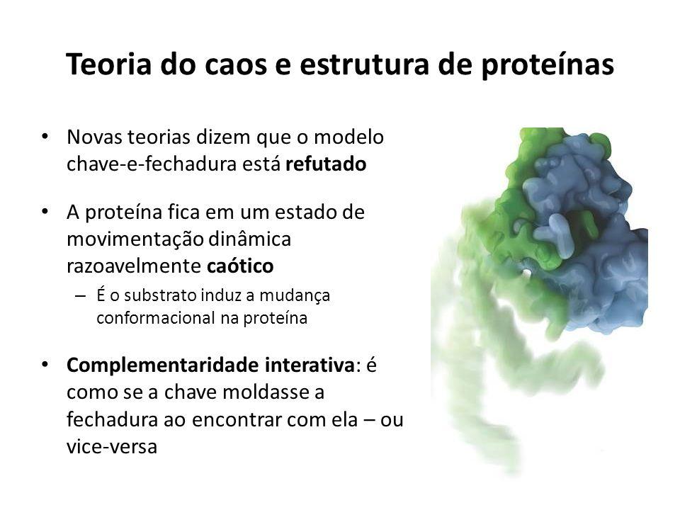 Conclusões As proteínas teem inúmeras funções celulares A estrutura da proteína é altamente relevante para que ela tenha uma função celular O contato proteína-proteína regula muitas funções intra e intercelulares (receptores de membrana) As proteínas mudam de conformação quando encaixadas a um ligante – A ligação reversível da proteína ao ligante é importante na regulação do metabolismo – Sítios de ligação podem ligar diferentes moléculas, algumas com mais afinidade do que o ligante desejado Proteínas interagem para a formação do citoesqueleto e contração muscular, gastando energia química Polimeração e despolimerização de complexos poliméricos acontecem em todo o instante nas células Proteínas podem ligar moléculas indiretamente -- através de grupos prostéticos Há um controle dos ligantes mais comuns dentro de um organismo e a presença de novas moléculas desconhecidas aciona o sistema imune