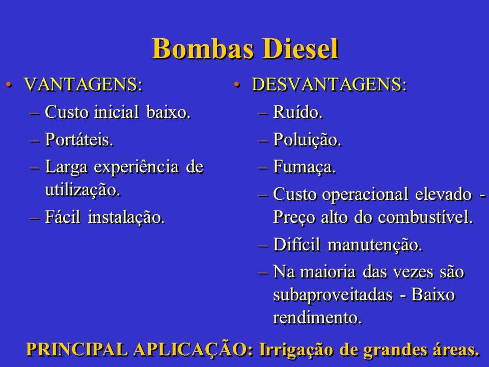 Bombas Manuais VANTAGENS: –Baixo custo. –Tecnologia simples. –Fácil manutenção. –Não requer combustível. –Limpeza. VANTAGENS: –Baixo custo. –Tecnologi