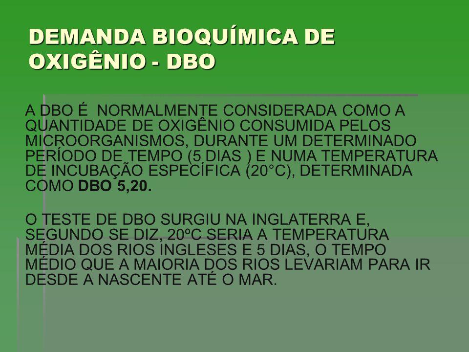 CARGA ORGÂNICA LANÇADA PELO MUNICÍPIO SEM TRATAMENTO