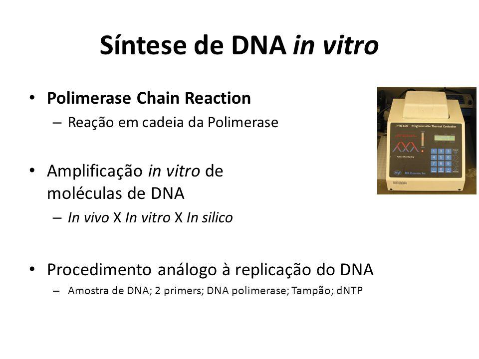 Síntese de DNA in vitro Polimerase Chain Reaction – Reação em cadeia da Polimerase Amplificação in vitro de moléculas de DNA – In vivo X In vitro X In silico Procedimento análogo à replicação do DNA – Amostra de DNA; 2 primers; DNA polimerase; Tampão; dNTP
