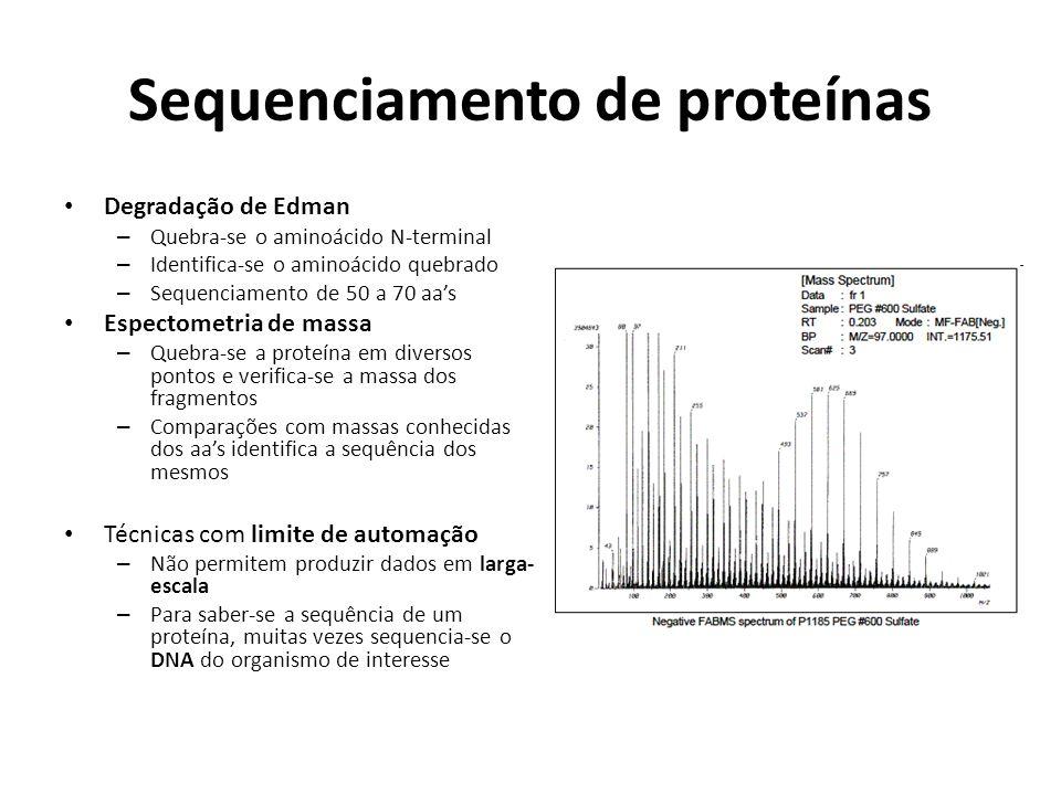Sequenciamento de proteínas Degradação de Edman – Quebra-se o aminoácido N-terminal – Identifica-se o aminoácido quebrado – Sequenciamento de 50 a 70 aas Espectometria de massa – Quebra-se a proteína em diversos pontos e verifica-se a massa dos fragmentos – Comparações com massas conhecidas dos aas identifica a sequência dos mesmos Técnicas com limite de automação – Não permitem produzir dados em larga- escala – Para saber-se a sequência de um proteína, muitas vezes sequencia-se o DNA do organismo de interesse