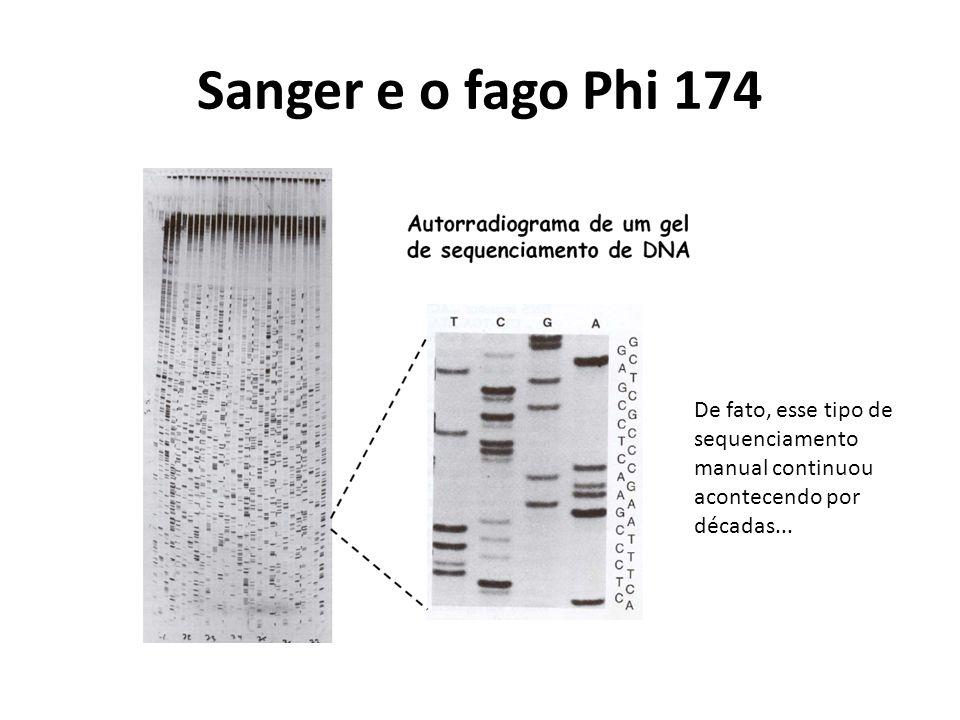 Sanger e o fago Phi 174 De fato, esse tipo de sequenciamento manual continuou acontecendo por décadas...