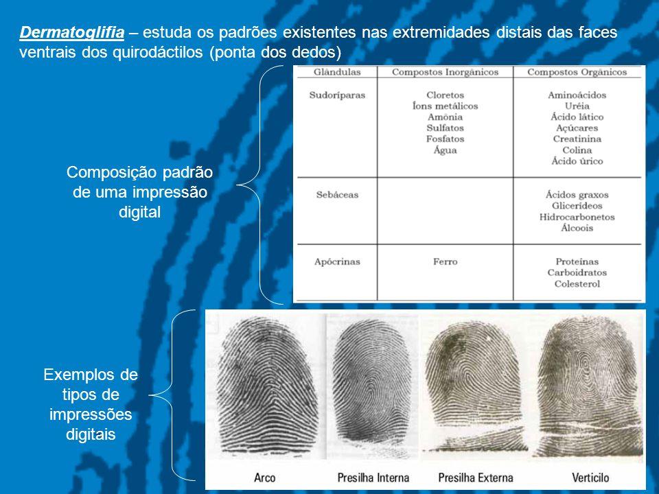 3 Dermatoglifia – estuda os padrões existentes nas extremidades distais das faces ventrais dos quirodáctilos (ponta dos dedos) Composição padrão de um
