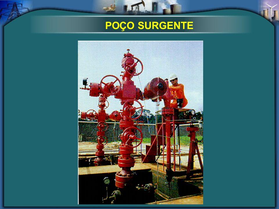 POÇO SURGENTE