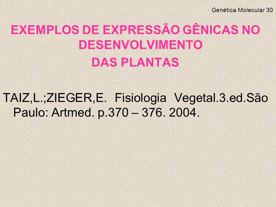 Genética Molecular 30 EXEMPLOS DE EXPRESSÃO GÊNICAS NO DESENVOLVIMENTO DAS PLANTAS TAIZ,L.;ZIEGER,E.