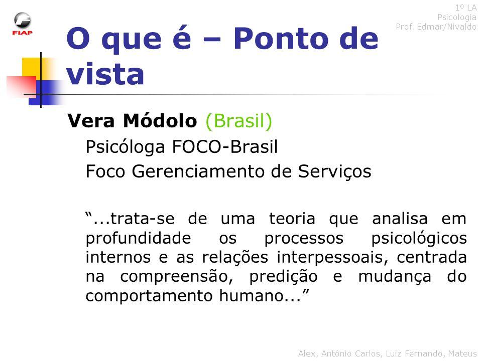 O que é – Ponto de vista Vera Módolo (Brasil) Psicóloga FOCO-Brasil Foco Gerenciamento de Serviços...trata-se de uma teoria que analisa em profundidad