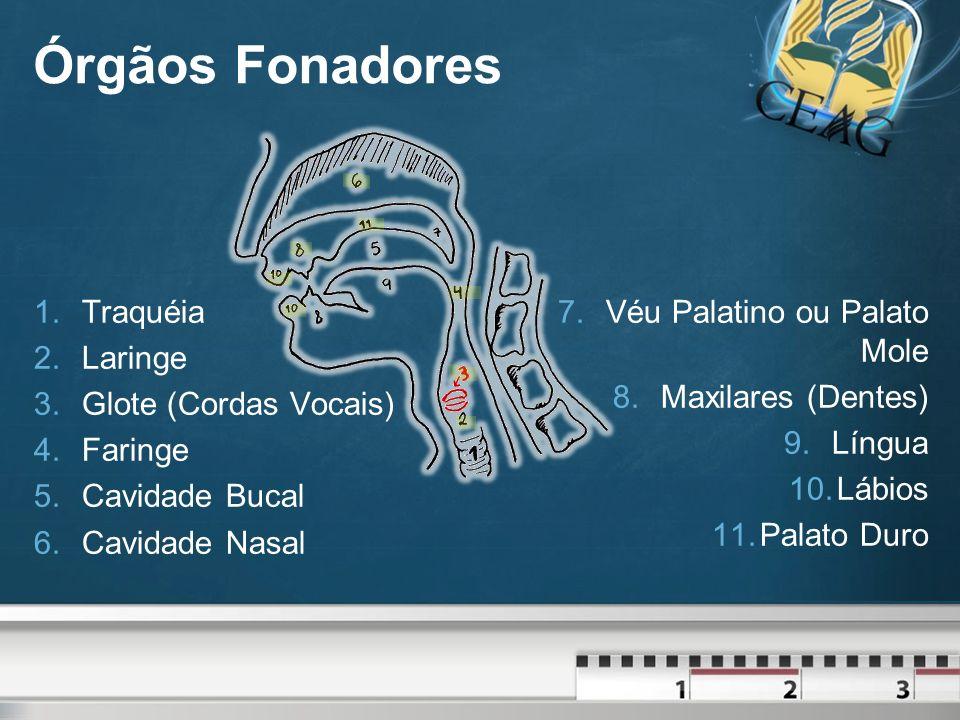Classificação dos Fonemas O som é produto da saída do ar pela boca ou pelo nariz.