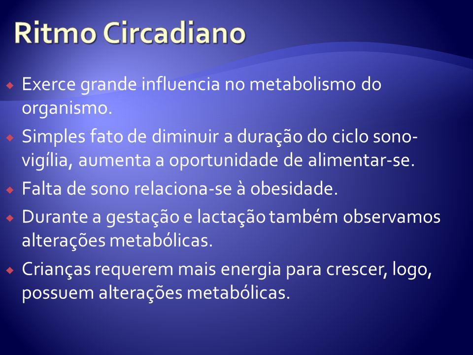 Exerce grande influencia no metabolismo do organismo. Simples fato de diminuir a duração do ciclo sono- vigília, aumenta a oportunidade de alimentar-s