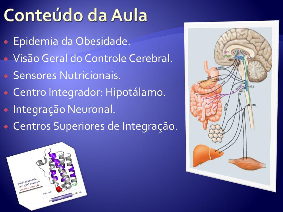 Epidemia da Obesidade. Visão Geral do Controle Cerebral. Sensores Nutricionais. Centro Integrador: Hipotálamo. Integração Neuronal. Centros Superiores