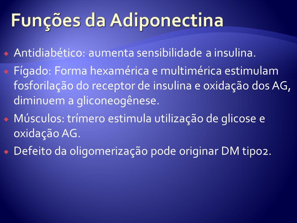 Antidiabético: aumenta sensibilidade a insulina. Fígado: Forma hexamérica e multimérica estimulam fosforilação do receptor de insulina e oxidação dos