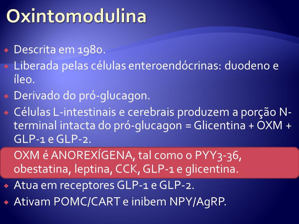 Descrita em 1980.Liberada pelas células enteroendócrinas: duodeno e íleo.