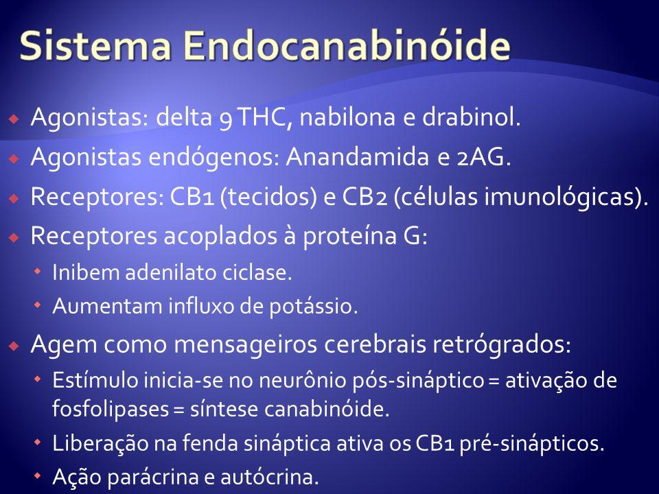 Agonistas: delta 9 THC, nabilona e drabinol. Agonistas endógenos: Anandamida e 2AG. Receptores: CB1 (tecidos) e CB2 (células imunológicas). Receptores