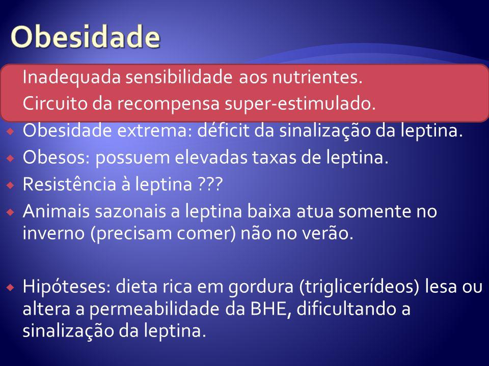 Inadequada sensibilidade aos nutrientes. Circuito da recompensa super-estimulado. Obesidade extrema: déficit da sinalização da leptina. Obesos: possue