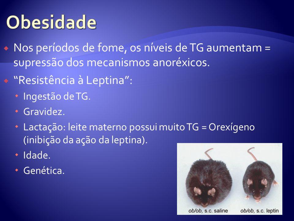 Nos períodos de fome, os níveis de TG aumentam = supressão dos mecanismos anoréxicos. Resistência à Leptina: Ingestão de TG. Gravidez. Lactação: leite