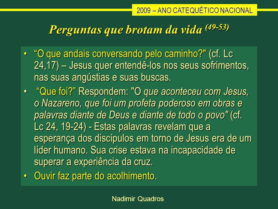 2009 – ANO CATEQUÉTICO NACIONAL Nadimir Quadros Perguntas que brotam da vida (49-53) O que andais conversando pelo caminho? (cf.