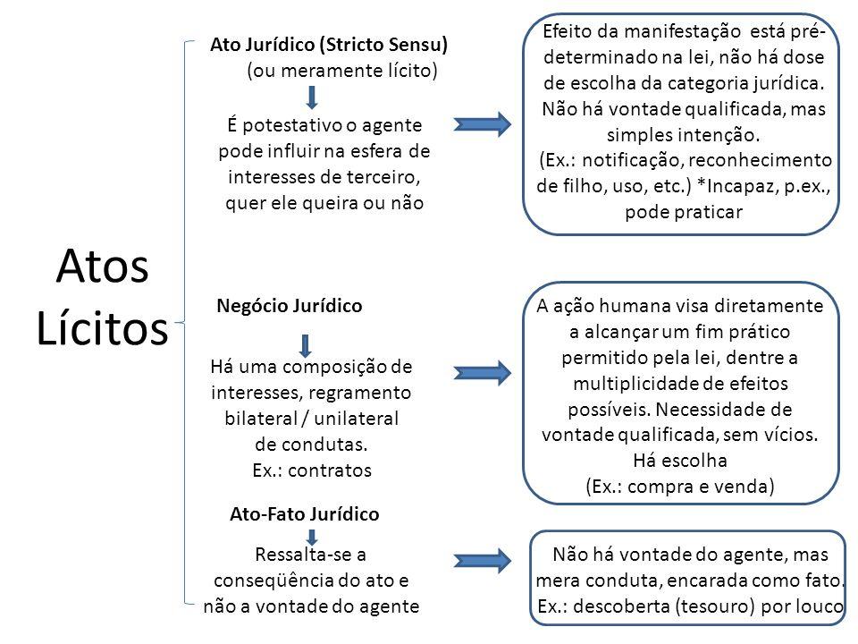 A ação humana visa diretamente a alcançar um fim prático permitido pela lei, dentre a multiplicidade de efeitos possíveis. Necessidade de vontade qual