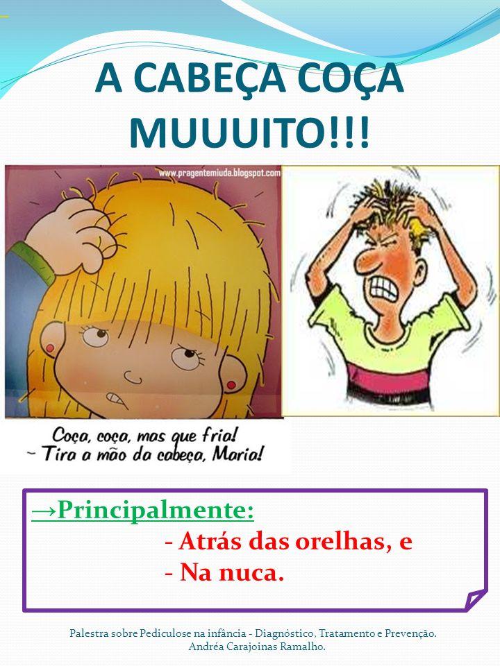 A CABEÇA COÇA MUUUITO!!! Palestra sobre Pediculose na infância - Diagnóstico, Tratamento e Prevenção. Andréa Carajoinas Ramalho. Principalmente: - Atr