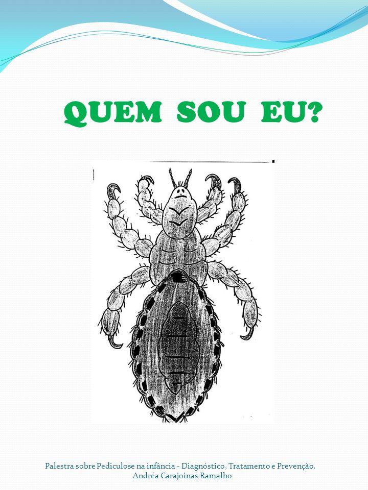 Palestra sobre Pediculose na infância - Diagnóstico, Tratamento e Prevenção. Andréa Carajoinas Ramalho QUEM SOU EU?
