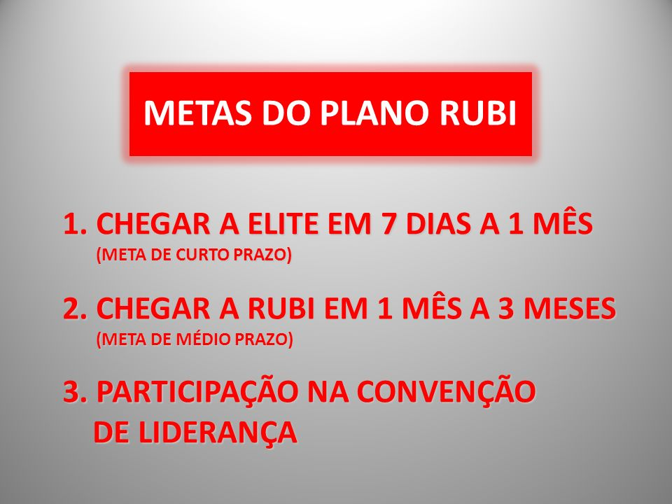 METAS DO PLANO RUBI 2.
