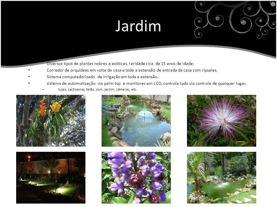 Jardim Diversos tipos de plantas nobres e exóticas, raridade cica de 15 anos de idade; Corredor de orquídeas em volta da casa e toda a extensão de entrada da casa com ripsales.