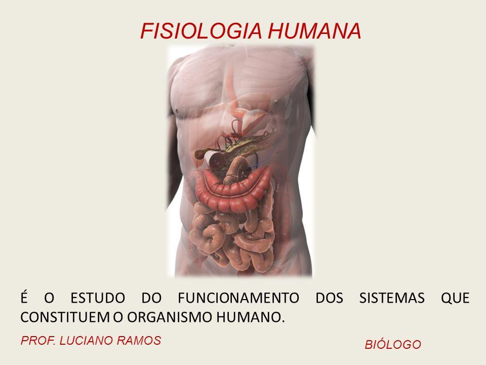FISIOLOGIA HUMANA PROF. LUCIANO RAMOS BIÓLOGO É O ESTUDO DO FUNCIONAMENTO DOS SISTEMAS QUE CONSTITUEM O ORGANISMO HUMANO.