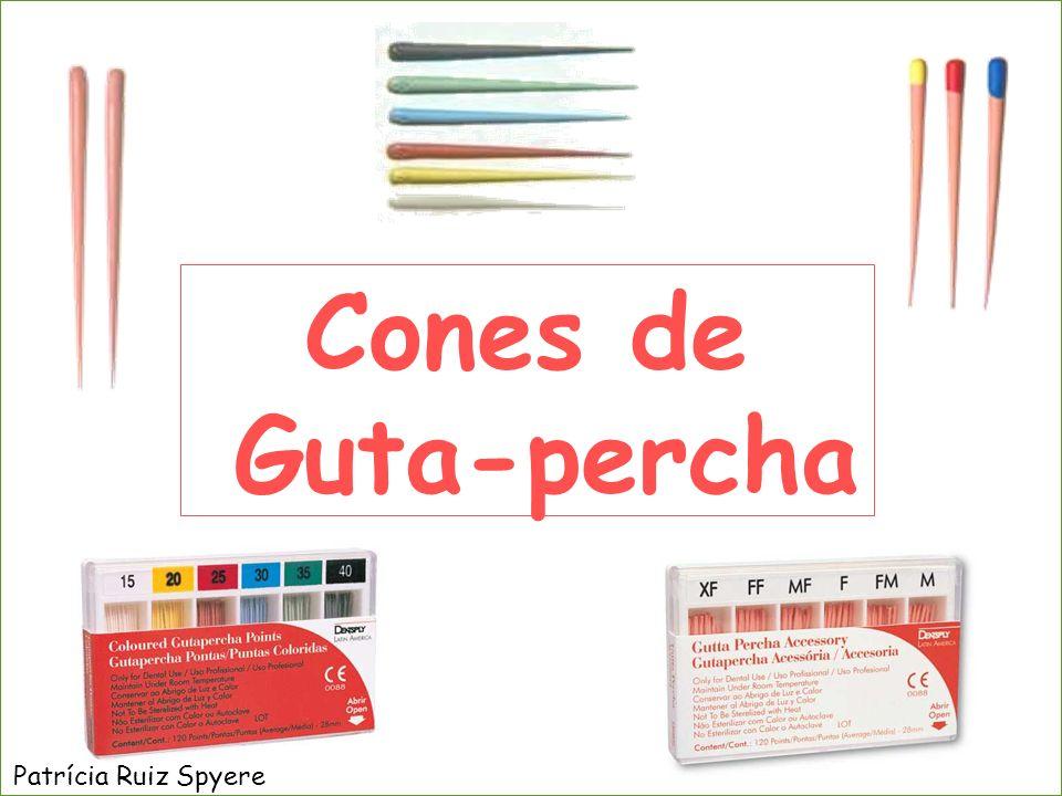 Cones de Guta-percha Patrícia Ruiz Spyere
