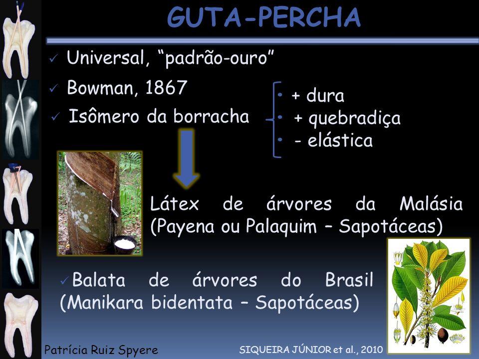 Universal, padrão-ouro Isômero da borracha Bowman, 1867 + dura + quebradiça - elástica Látex de árvores da Malásia (Payena ou Palaquim – Sapotáceas) B