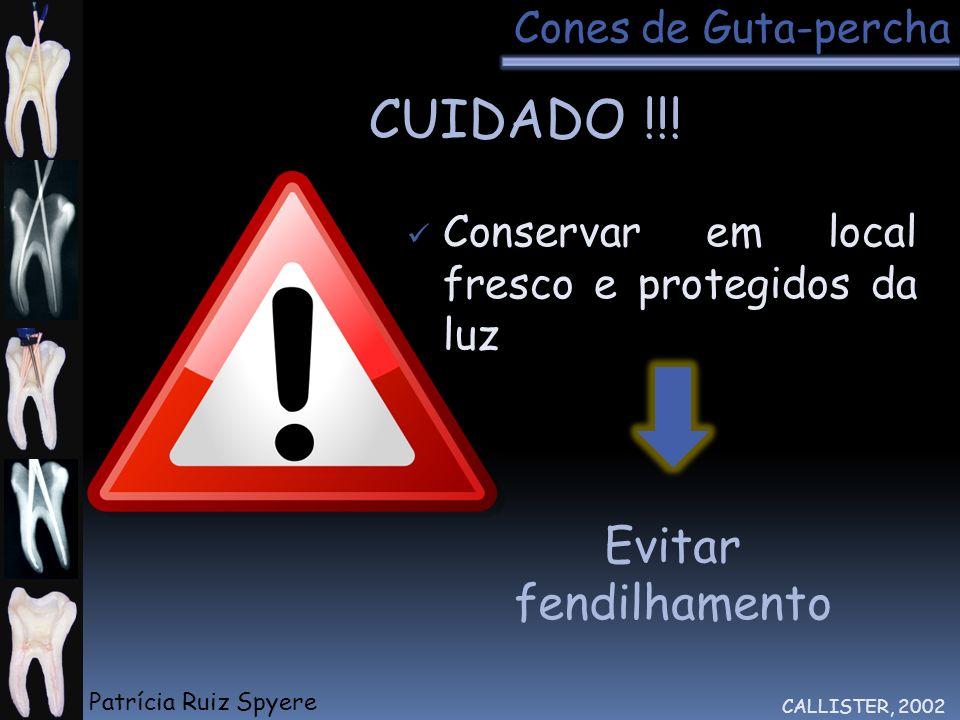 Evitar fendilhamento Conservar em local fresco e protegidos da luz CUIDADO !!! CALLISTER, 2002 Cones de Guta-percha Patrícia Ruiz Spyere