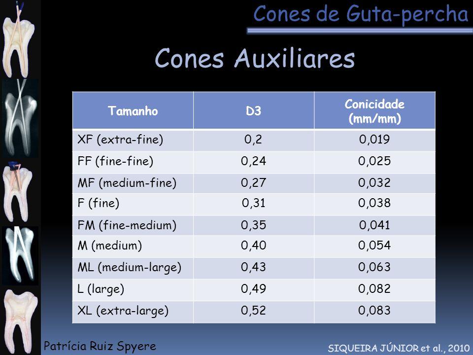 Cones Auxiliares SIQUEIRA JÚNIOR et al., 2010 TamanhoD3 Conicidade (mm/mm) XF (extra-fine)0,20,019 FF (fine-fine)0,240,025 MF (medium-fine)0,270,032 F