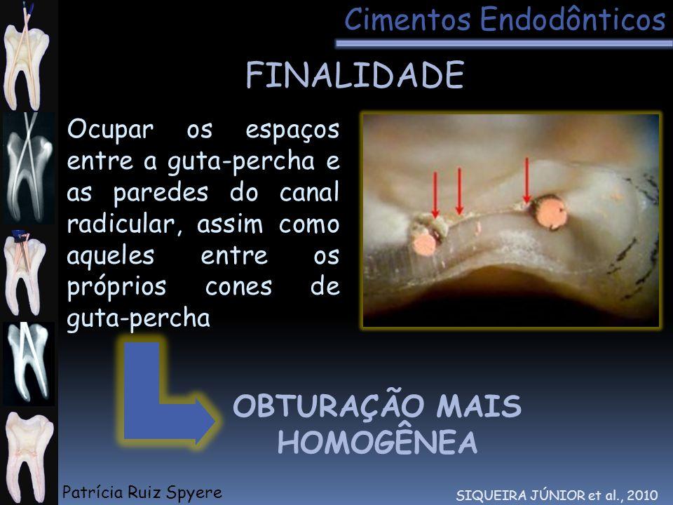 Ocupar os espaços entre a guta-percha e as paredes do canal radicular, assim como aqueles entre os próprios cones de guta-percha FINALIDADE Cimentos E