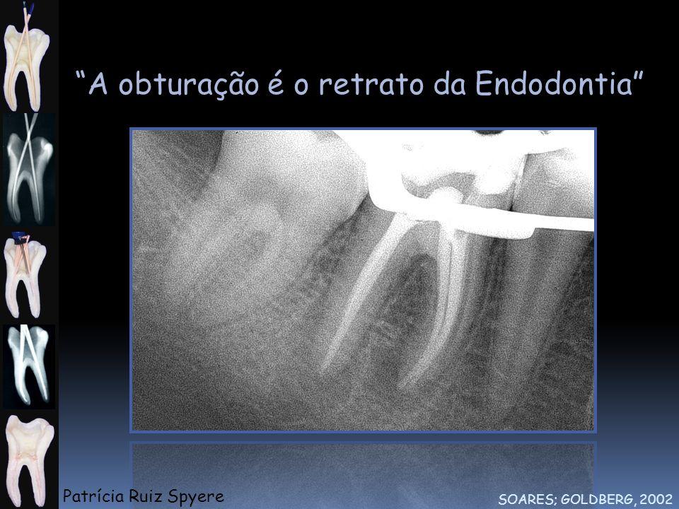A obturação é o retrato da Endodontia SOARES; GOLDBERG, 2002 Patrícia Ruiz Spyere