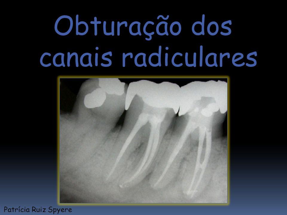 Obturação dos canais radiculares Patrícia Ruiz Spyere