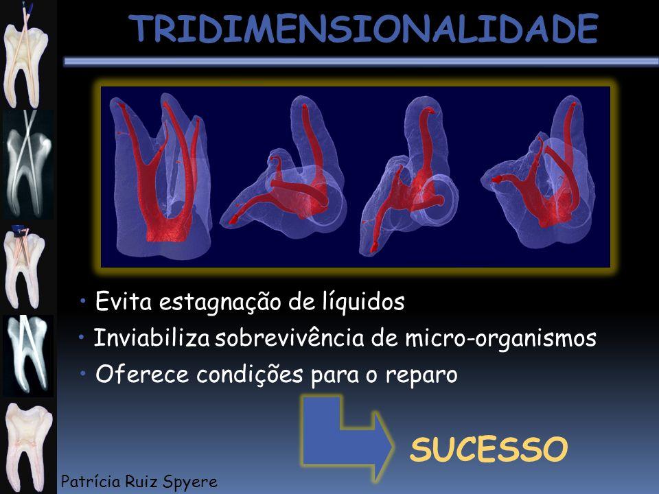 SUCESSO Inviabiliza sobrevivência de micro-organismos TRIDIMENSIONALIDADE Evita estagnação de líquidos Oferece condições para o reparo Patrícia Ruiz S