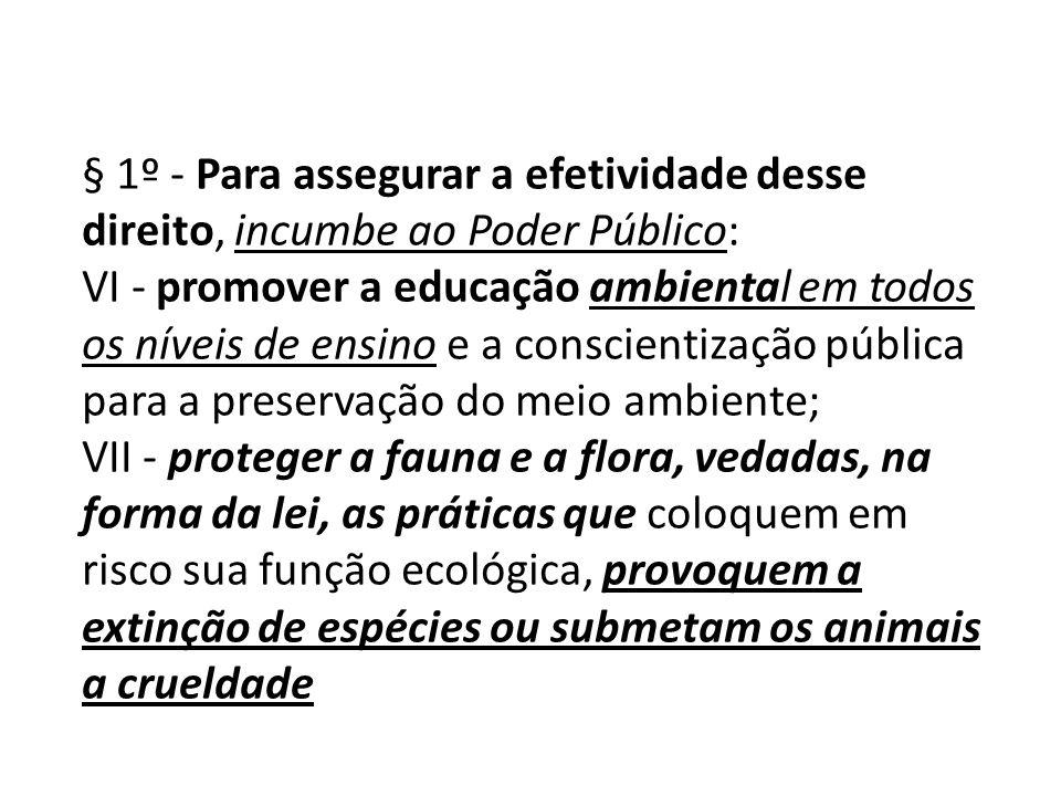 § 1º - Para assegurar a efetividade desse direito, incumbe ao Poder Público: VI - promover a educação ambiental em todos os níveis de ensino e a consc